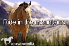 Un-completed horse bucket list stuff