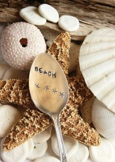 Sea shells decor