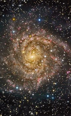 IC 342, the Hidden Galaxy, is positioned only 10 degrees above the plane of our Milky Way Galaxy, so its light is heavily obscured and reddened by dust. It is 7 million light-years away but is not part of our Local Group of galaxies.