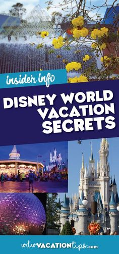 I think we all know the most magical place on Earth, Disney World, has a few secrets hiding in its closet. Let\'s take a look at the must-know Disney World vacation secrets.