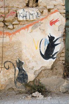 Cats, Athens. street art