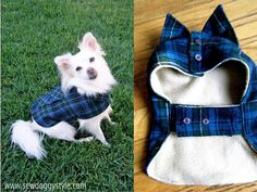 Warm, cozy - and cute! - dog coat from a flannel shirt.