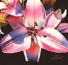 """Daily+Paintworks+-+""""Pink+Asiatic+Lily""""+-+Original+Fine+Art+for+Sale+-+©+Jacqueline+Gnott"""