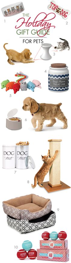 For the holiday season, we've complied a list of Fun Gift Ideas for Pets! 2014 Holiday Gift Guide - Dogs & Cats