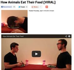 How Animals Eat Their Food. I laughed my face off at this.  My stomach hurts so much.