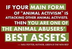 animal rights   Tumblr