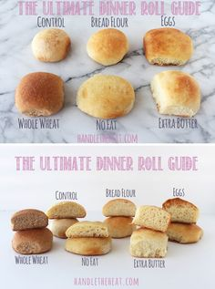 The Ultimate Dinner Roll Guide experiments with 6 batches of bread rolls to show how different ingredients make soft, crusty, fluffy, or hard rolls.
