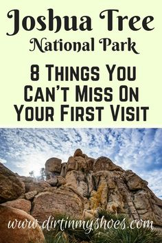 Check out these 8 things you can't miss in Joshua Tree! Written by a former Park Ranger!