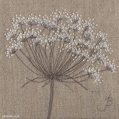 Jo Butcher - Jo Butcher - Cow Parsley on Linen I