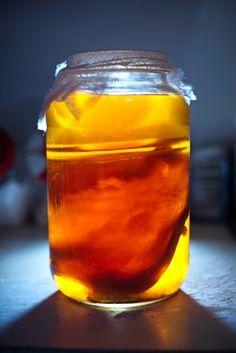 The Amazing Benefits Of Kombucha  The Immortal Health Elixir!