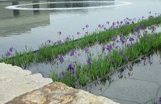 Toyota Municipal Museum of Art   PWP Landscape Architecture