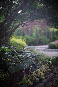 Avant Gardens, via Flickr.