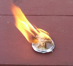 The easiest way to start a fire while camping is to use cotton balls covered in vasoline. Just pull them apart a little bit before you light. Great for backpacking. They even start up with flint and steel!