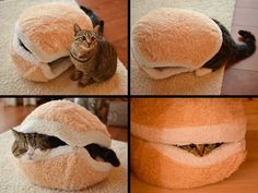 Watch This Cat Become a Hamburger in 4 Easy Steps That is all.