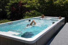 swim spa images | the endless pool swim spa offers dual use flexibility hydrotherapy spa ...