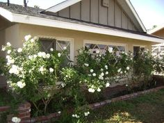 Anaheim House Rental: Lovely Firework View House With Pool And Steps To Disney-special Offer!!! | HomeAway