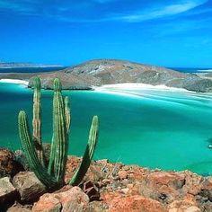 Cuando las cosas no van bien y la tristeza me invade... trato de transportarme a este lugar, caminar por sus aguas, sentarme a contemplar la inmensidad, recoger un poco  de su paz... con respiro hondo solo espero a que todo pase. Honor a quien honor merece y este lugar hace honor a su nombre.  Playa Balandra, La Paz Mexico