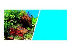 Fondo Decorativo Plantas/Azul MARINA 7,6m - #FaunAnimal ofrecen una amplia variedad de paisajes impresionante color que añade intensidad visual de aspecto natural y la vitalidad a los acuarios