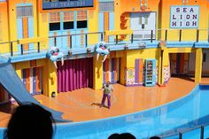 Disney Travel Tips and Hints: Clyde and Seamore's Sea Lion High show at SeaWorld Orlando