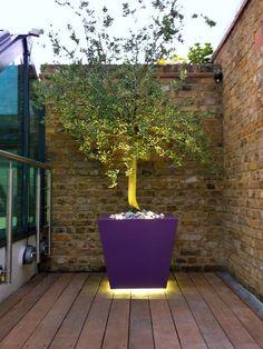 bespoke planting design ideas