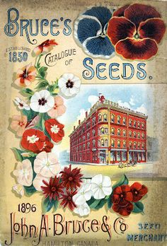 Seed catalogue covers