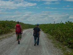 Caminantes por las desoladas carreteras de #CayoCoco