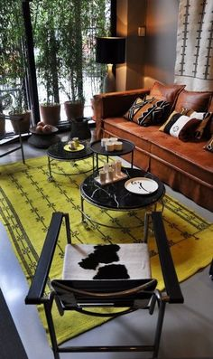 HATE animal hides, but love the view & the yellow rug accent!