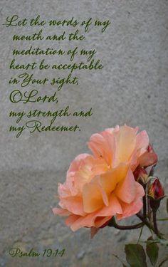 ... the meditation of my heart... (Psalm 19:14)