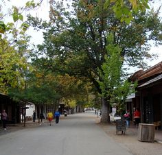 "Columbia State Historic Park in Tuolumne County is a fantastically well preserved authentic 1849 Gold Rush era town that is still functioning as a place for people to live. It's a great mix of real and ""museum"" businesses and wonderfully restored homes and businesses. You can experience a bygone era watching proprietors in period clothing conduct business in the style of yesterday, and even ride a 100 year-old stagecoach and pan for gold."