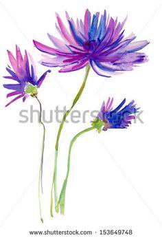 Stylized Chrysanthemum flower, watercolor illustration by olies, via Shutterstock