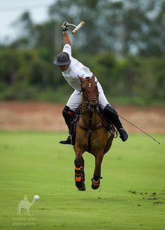 love polo...