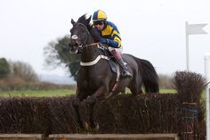 Mendip Express Stakes National Claims After Aintree Horse Racing, Horses, World, Sports, Animals, Hs Sports, Animales, Animaux, Sport