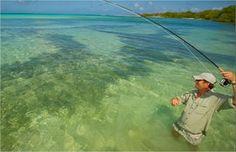 http://www.pescaemlosroques.com.br/