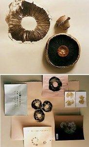 print making printmaking Pilze // Mushrooms Toile Photo, Mushroom Art, Mushroom Spores, Fabric Stamping, Nature Prints, Mark Making, Art Plastique, Fabric Painting, Art Techniques
