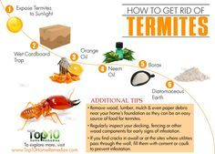 http://www.top10homeremedies.com/how-to/how-to-get-rid-of-termites.html