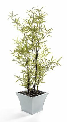 """Artificial 4ft 5"""" Bamboo Tree with Natural Black Stems (P069D) from Artplants.co.uk"""