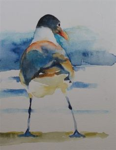 """Laughing Gull Sketch"" - Original Fine Art for Sale - © Sue Churchgrant"
