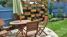 Image result for budget garden ideas