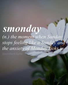 (Fictitious word) When does smonday start to hit you?