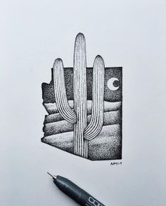 Looking through a bunch of 2015 drawings to add to my store after the art show. #cactus #Arizona #art #illustration by samlarson