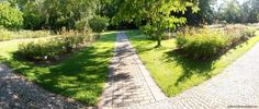 This botanic garden is first of its kind opened in Slovakia and the only botanic garden in Bratislava. Bratislava, Botanical Gardens, Sidewalk, Side Walkway, Walkway, Walkways, Pavement