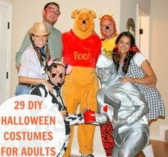29 homemade halloween costumes for adults #costume (via @thecraftblog )