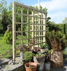 Pergola, Outdoor Structures, Gardening, Miniature Golf, Outdoor Pergola, Lawn And Garden, Horticulture