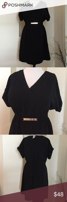 """NWT: Gold Detail LBD Pull over, V neckline, short cuff sleeves, elastic waist with gold metal detail.  Stretch fabric, 39"""" long from shoulders to hem.  Size 14/16W Lane Bryant Dresses"""
