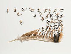 鳥の羽から生み出された小鳥たち。鳥の羽を使って作られた驚異のフェザーアート「Feather Marvels」 : カラパイア