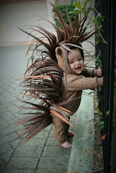Porcupine halloween costume diy 2016