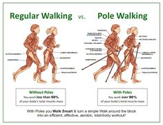 Muscles: Nordic walking vs Running/Walking Race Walking, Walking Poles, Walking Sticks, Berlin, Walking Exercise, Rando, Funny Cats And Dogs, Healthy Aging, Sports Activities