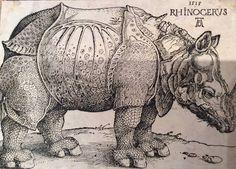 Albrecht Dürer (1471-1528), Le Rhinocéros, gravure sur bois, épreuve d'un tirage vers le milieu du XVIe siècle, 21,3 x 29,7 cm