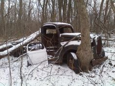 awesome..a tree hugging truck