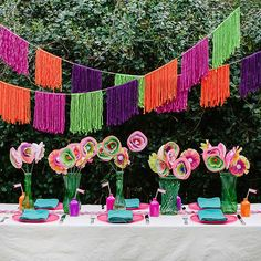 Enroll now! Modern Fiesta 101 provides helpful tips and tricks to throwing a fabulous fiesta.